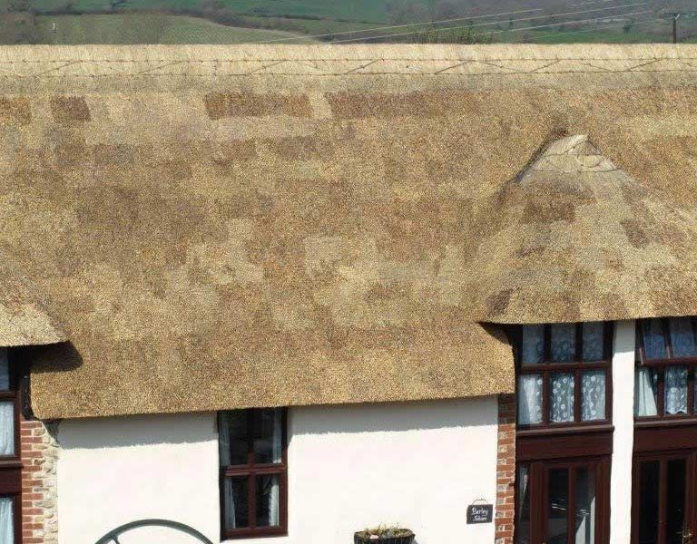Exterior Shot of thatched room on Barley Store