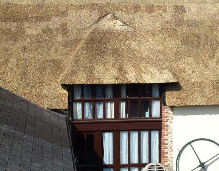 Exterior of Squirrels Drey Thatched Roof